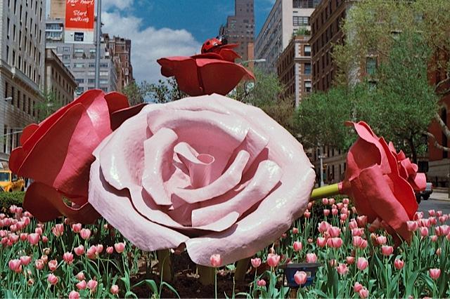 flowerslast